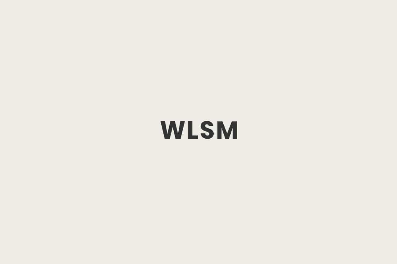 Was ist WLSM